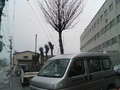 直江津南小学校