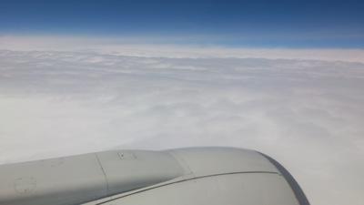 ANA ボーイング737 新潟空港