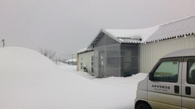 雪 フルサット