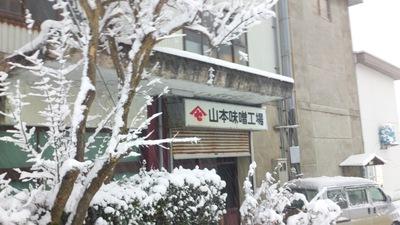 直江津の積雪