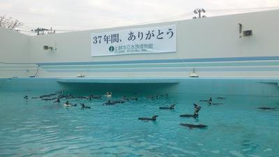 すいはく(上越市立水族博物館)閉館