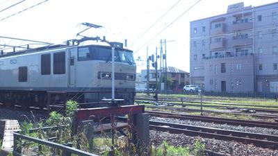 白い貨物列車