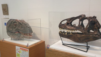 上越科学館 ミニ恐竜展